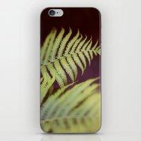 Fern 2 iPhone & iPod Skin