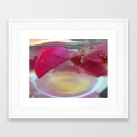 Rose Petals In Water Framed Art Print