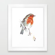 European Robin Framed Art Print