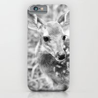 iPhone & iPod Case featuring In the Tall Summer Grass by SilverSatellite
