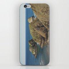 Guanos iPhone & iPod Skin