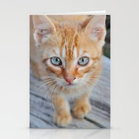 Kitty Cat Stationery Cards