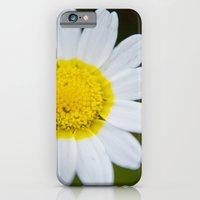 Miss Daisy iPhone 6 Slim Case