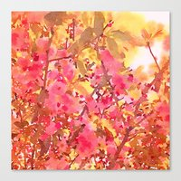 Cherry Blossom Canopy Canvas Print