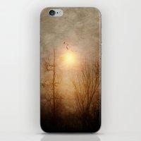 Bitter Sweet Symphony iPhone & iPod Skin