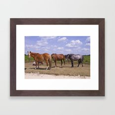 New Forest Ponies Framed Art Print