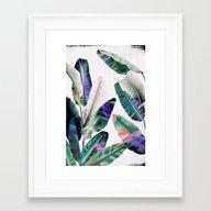 Tropical #1 Framed Art Print
