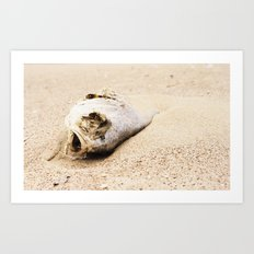 fish carcass Art Print