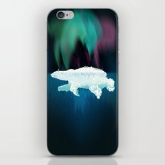 Polar Ice iPhone & iPod Skin