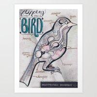 Anatomical Bird Art Print
