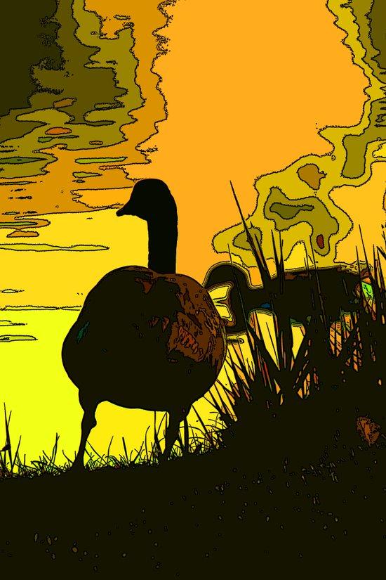 On Golden Pond Art Print