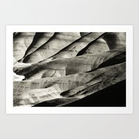 Painted Hills Monotone Art Print