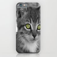 iPhone & iPod Case featuring Through the eyes of a kitten by Jake Stanton