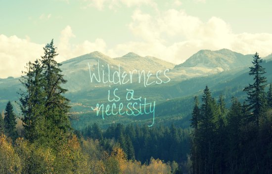 Wilderness is a Necessity Art Print