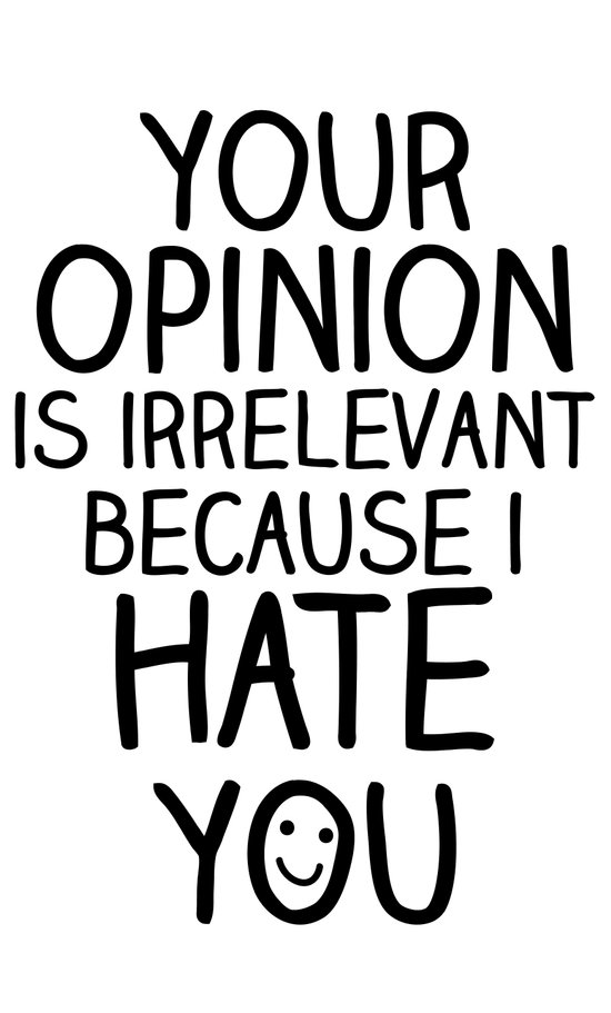 your opinion is irrelevant because i hate you Art Print