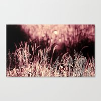 How much greener the grass is with those rose tinted glasses...  Canvas Print
