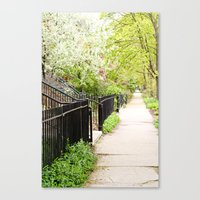 Another Day in the Neighborhood Canvas Print