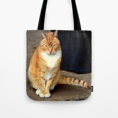Straighten Up Tote Bag