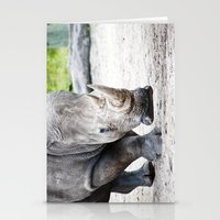 Rhino Approaching Stationery Cards
