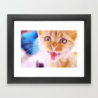 Angry Cat Framed Art Print