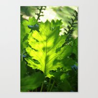 Green Touch Canvas Print