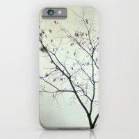 tree in the fog iPhone 6 Slim Case
