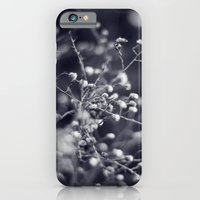 Winter Aster in Black and White iPhone 6 Slim Case
