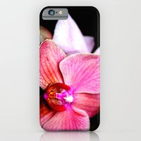 iPhone & iPod Case featuring Orchid 3 by sarah mah
