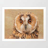 Art Print featuring OWLIFY by Catspaws