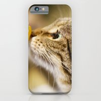 Tabby and the Flower iPhone 6 Slim Case