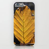iPhone & iPod Case featuring Yellow Leaf  by Emele Photography