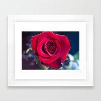 MAGIC ROSE Framed Art Print