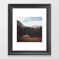 Lonely Cow Framed Art Print