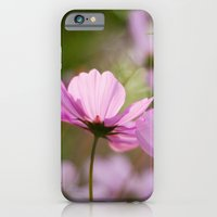 iPhone & iPod Case featuring Cotton Candy Cosmos by Katie Kirkland Photography