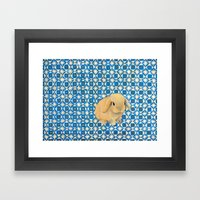 Charlie The Rabbit Framed Art Print