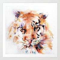 Tiger  Panthera . . .  Art Print