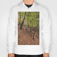 Steps Through Autumnal W… Hoody