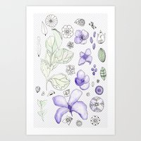 Violet Watercolor Art Print