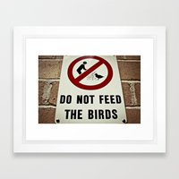 Don't feed the birds Framed Art Print
