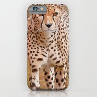 Cheetah iPhone 6 Slim Case
