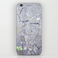 The Crackel iPhone & iPod Skin