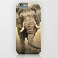 iPhone & iPod Case featuring African Beauty by tarrby