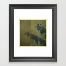 Trapped Behind The Window Framed Art Print