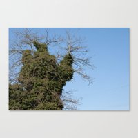 death by vine Canvas Print