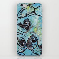 iPhone & iPod Skin featuring Blue Pit Bull Dog by WOOF Factory
