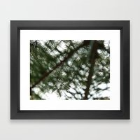 Sun Pines Framed Art Print