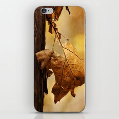 The Parting of Ways iPhone & iPod Skin