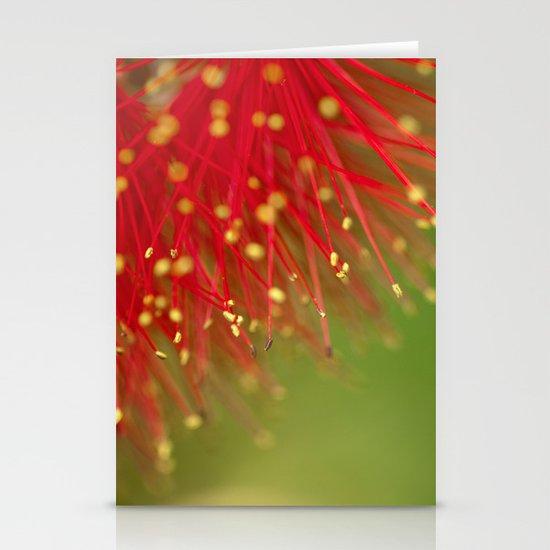 Fireworks of the Callistemon 30-13 Stationery Card