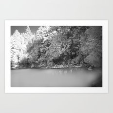 NATURE IIII Art Print