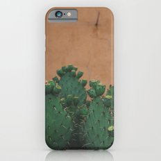 Route 66 Prickly Pears iPhone 6 Slim Case